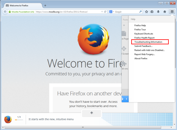 mozilla firefox troubleshooting information
