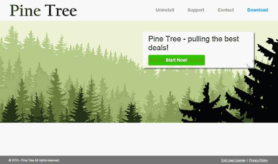 Pine Tree ads