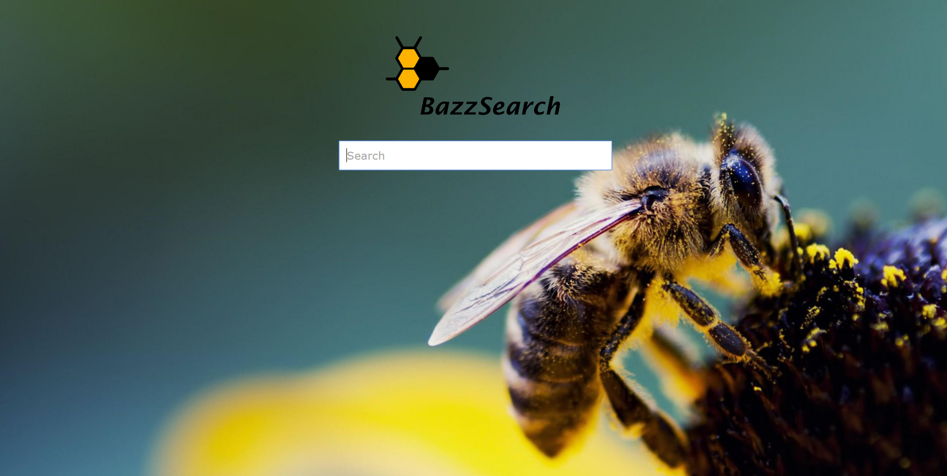 Bazz Search Ads