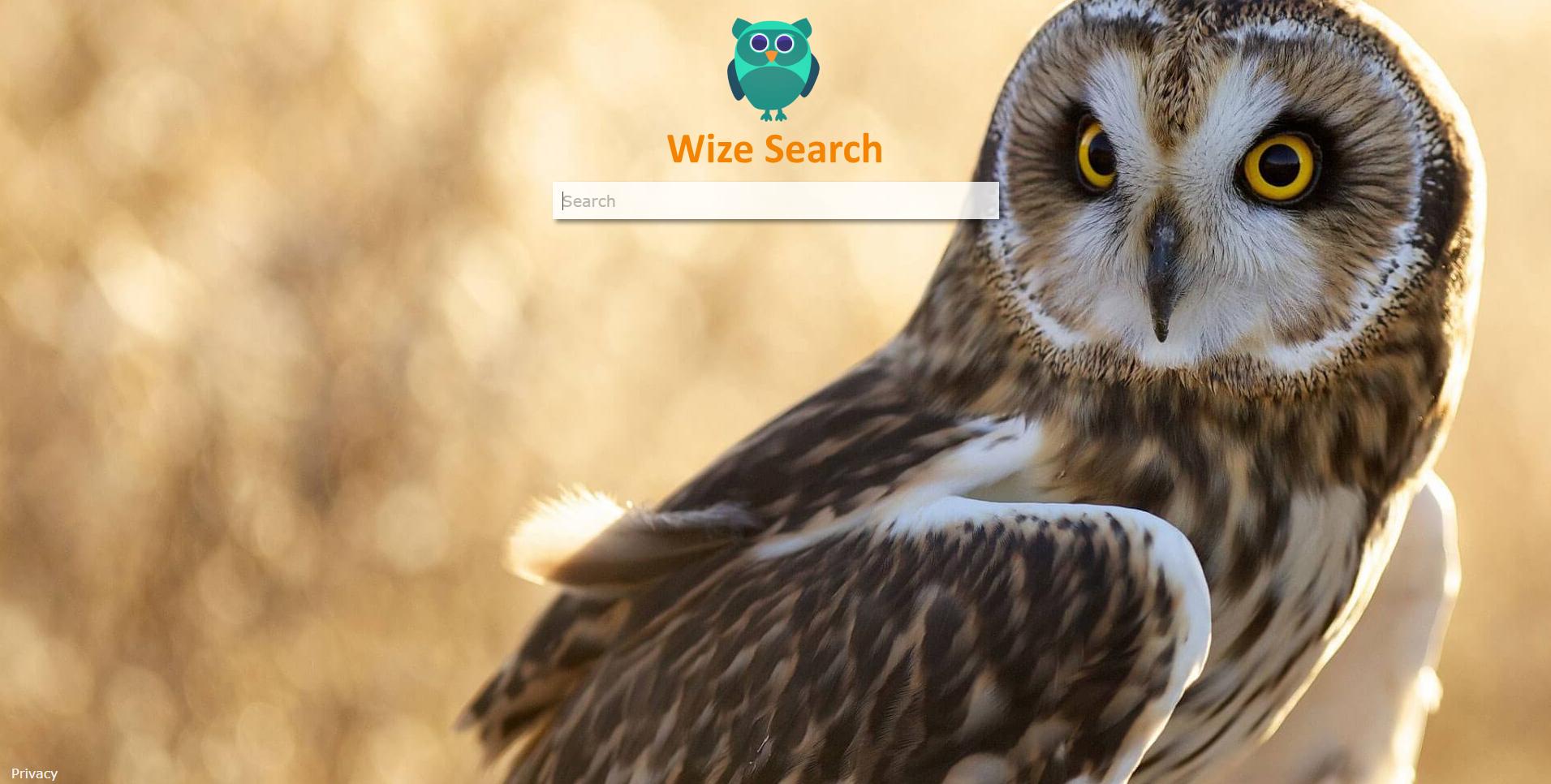 Wizesearch.com hijacker