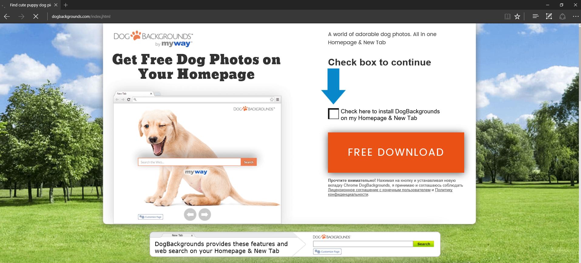 DogBackgrounds Toolbar