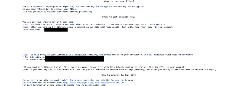 SamSam 2 Ransomware