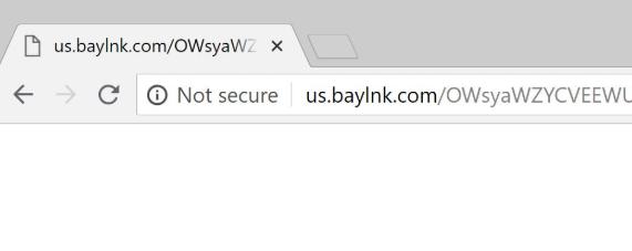 Us.baylnk.com Adware