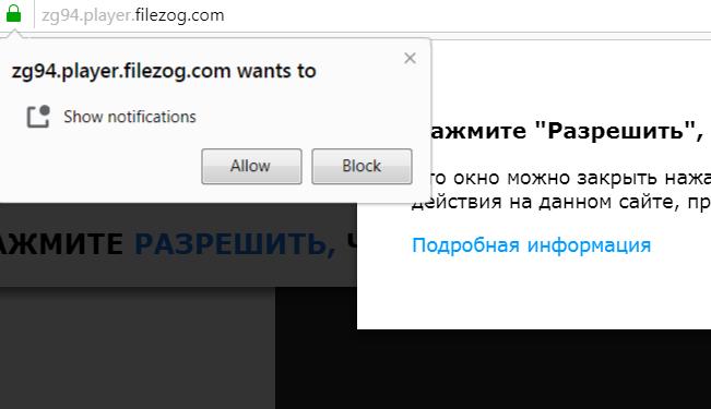 Player.filezog.com virus