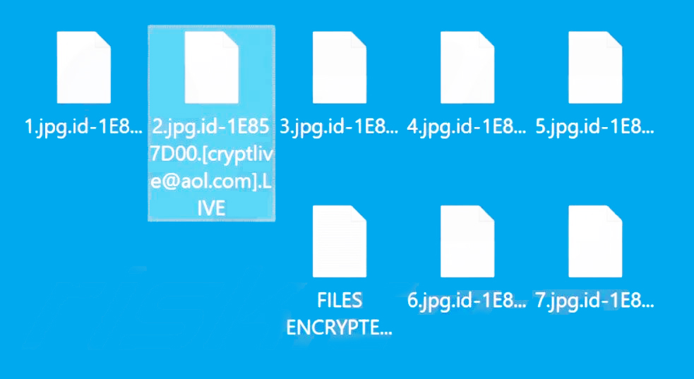 Live encrypted files