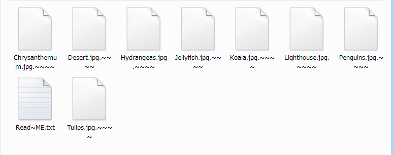 remove Gibberish ransomware