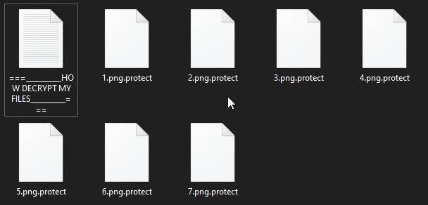 remove Protect ransomware