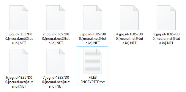 Net encrypted files