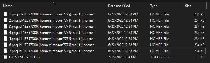 Homer encrypted files