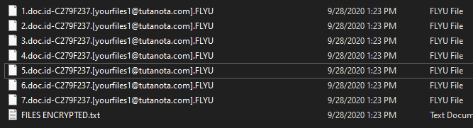 FLYU encrypted files