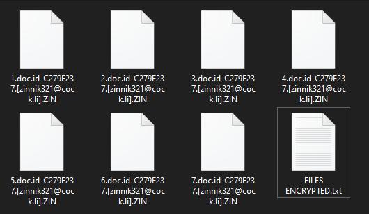 ZIN virus