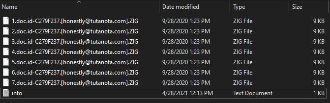 Zig virus